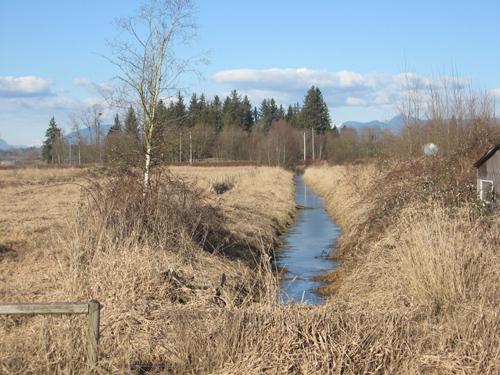 Environmental Hardships and Development Variance Permits